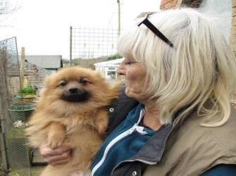 Braken's Dog Rescue
