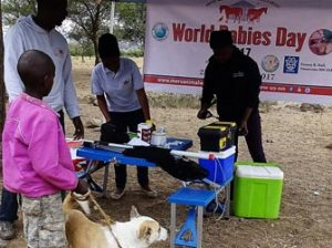 World Rabies Day in Tanzania