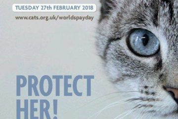 World Spay Day 2018 poster