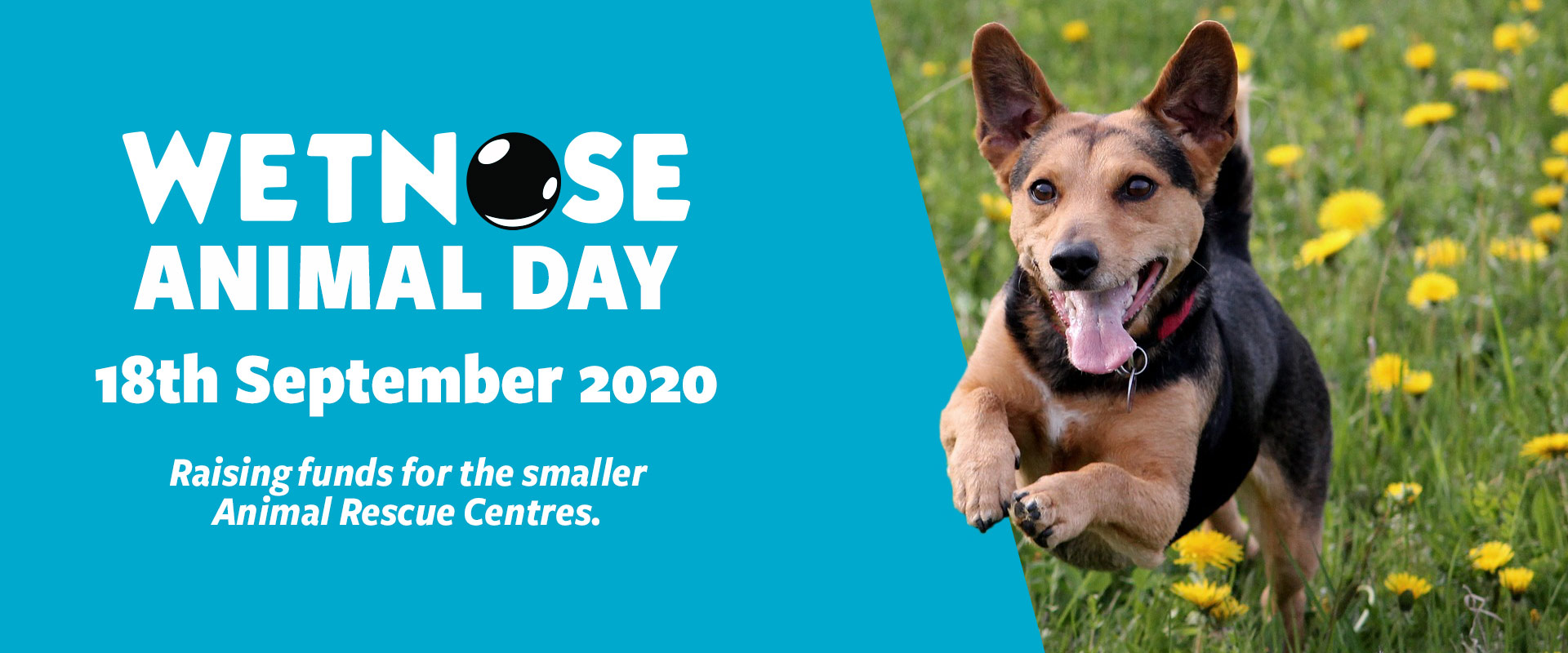 Wetnose Animal Day 2020