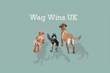 Wag Wins UK