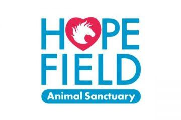 hopefield-logo