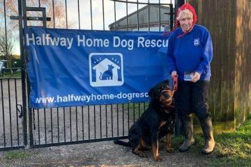 Half Way Rescue